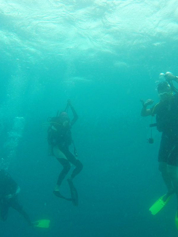 Diving at Pulau Pelangi